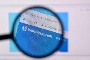 Installare tema WordrPress